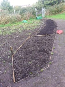 Before image of planting area at the Community garden and allotment
